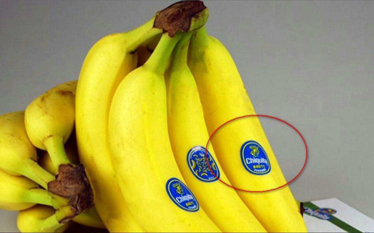پخش کننده انواع برچسب میوه