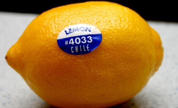 فروش انواع لیبل روی میوه